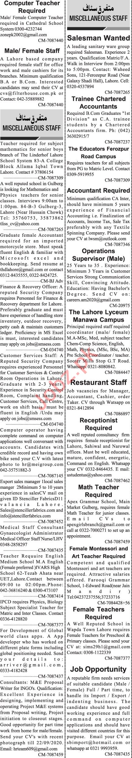 Jang Sunday Classified Ads 20 Sept 2020 for Management