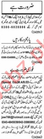 Nawaiwaqt Sunday Classified Ads 20 Sept 2020 General Staff