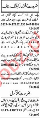 Nawaiwaqt Sunday Classified Ads 20 Sept 2020 for Sales Staff