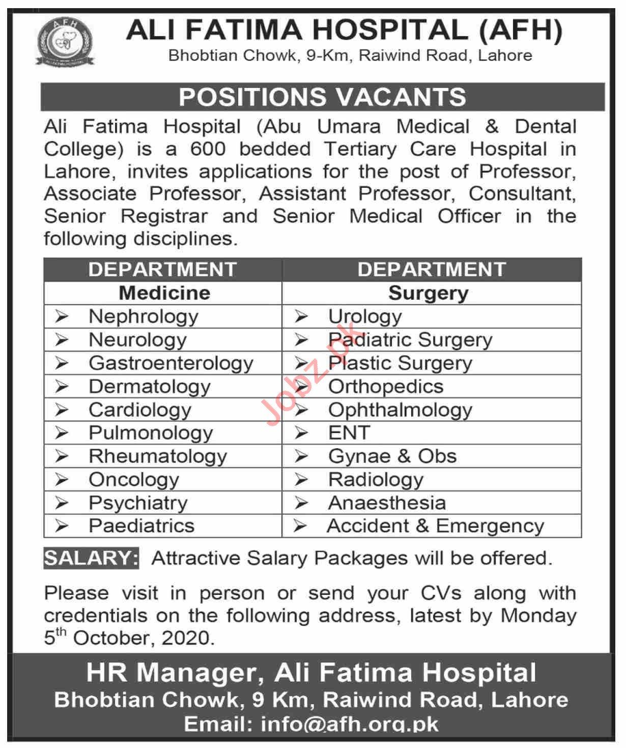 Professor & Lecturer Jobs in Ali Fatima Hospital AFH Lahore