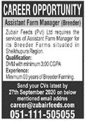 Assistant Farm Manager Job 2020 in Sheikhupura Region