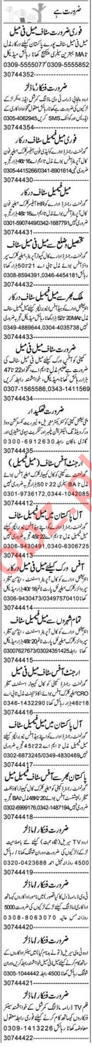 Insurance Agent & Admin Officer Jobs 2020 in Lahore
