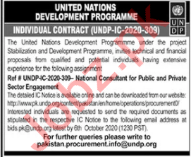 UNDP Jobs 2020 for Private Sector Engagement Consultant