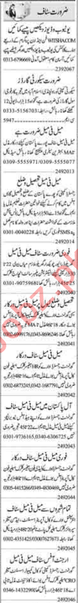 Admin Manager & Data Entry Operator Jobs 2020 in Islamabad