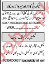 Security Executive & Security Incharge Jobs 2020