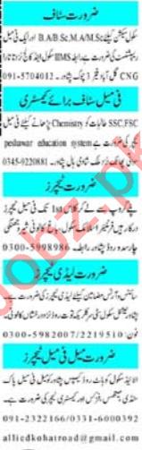 Principal & Teachers Jobs 2020 in Peshawar