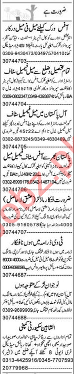 Recovery Officer & Admin Officer Jobs 2020 in Faisalabad