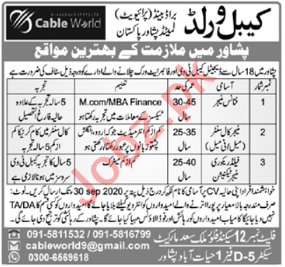 Cable World Peshawar Jobs 2020 for Finance Manager