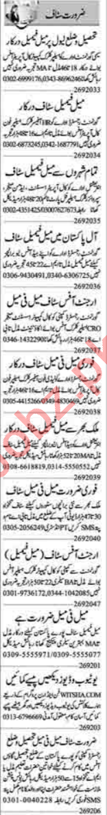 Cashier & Recovery Officer Jobs 2020 in Lahore