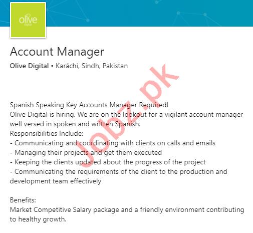 Olive Digital Karachi Jobs 2020 for Account Manager