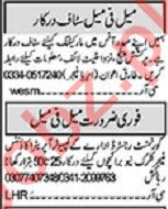 Khabrain Sunday Classified Ads 27 Sept 2020 for Admin Staff