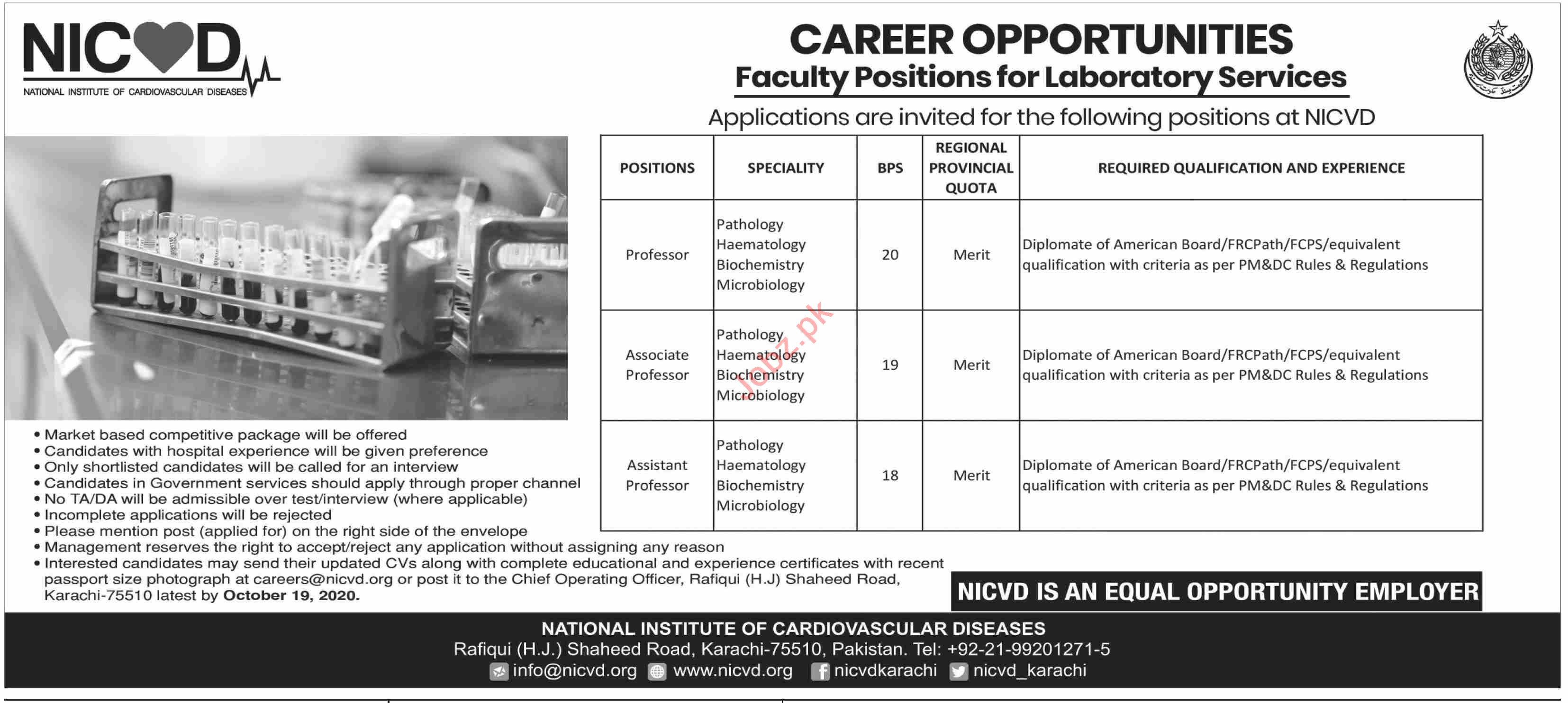 NICVD Jobs 2020 for Professor & Associate Professor