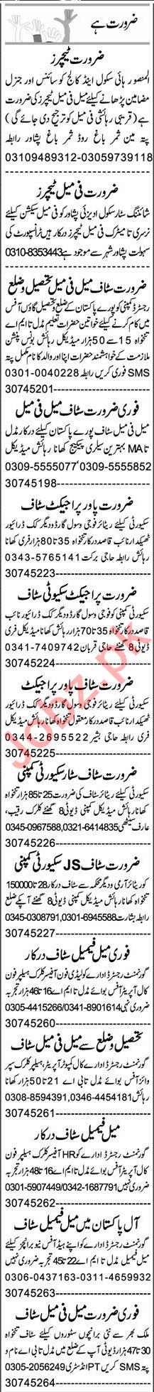 Web Developer & HR Officer Jobs 2020 in Peshawar