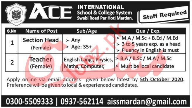 ACE International School & College System Mardan Jobs 2020