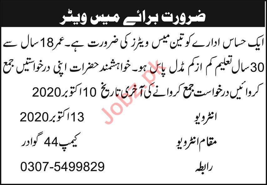 Public Sector Organization Gwadar Jobs 2020 for Waiter