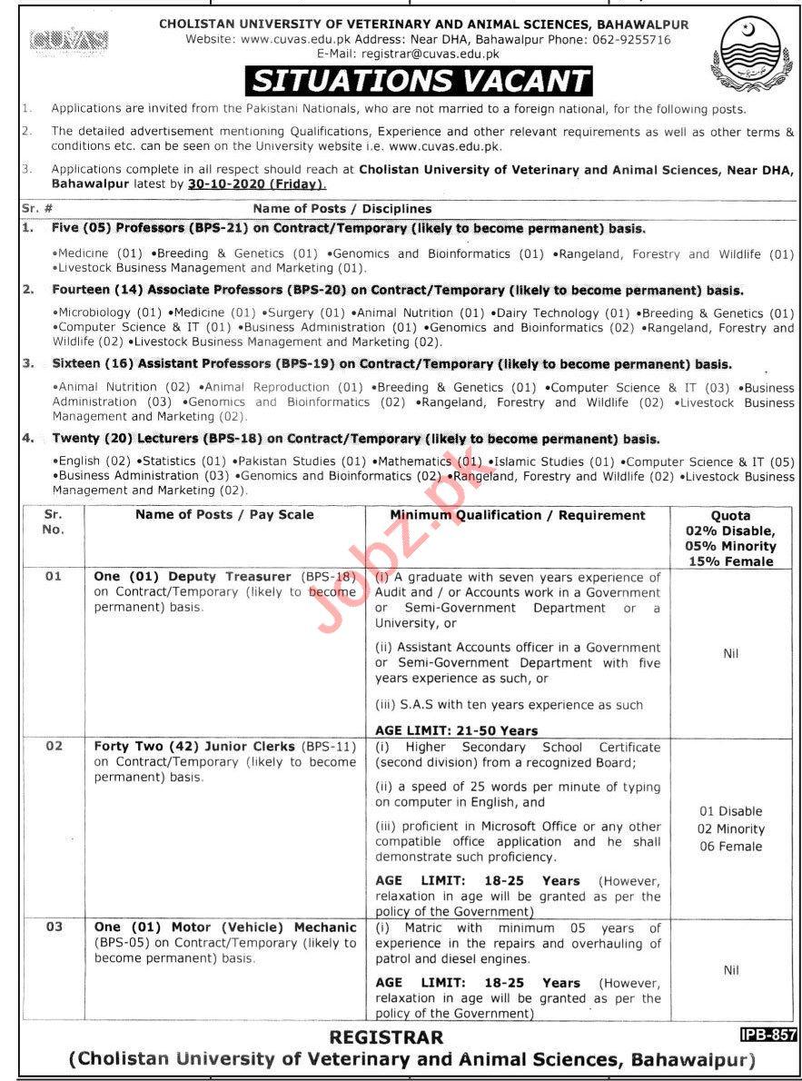 Cholistan University CUVAS Jobs 2020 for Professors