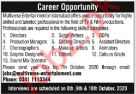 Multiverse Entertainment Jobs for Director & Script Writer