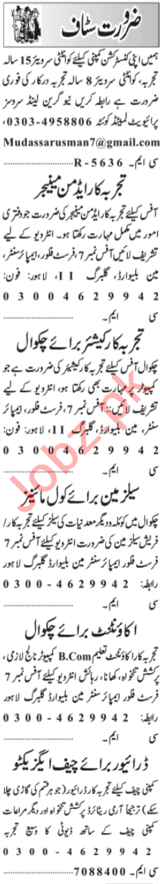 Chief Executive & Accountant Jobs 2020 in Lahore