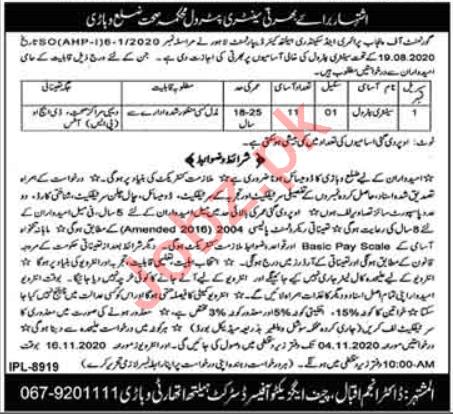 District Health Authority DHA Vehari Jobs Sanitary Petrol