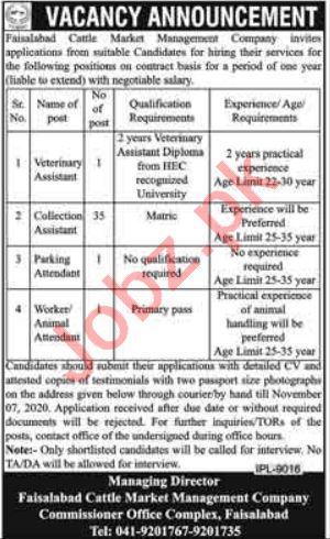 Faisalabad Cattle Market Management Company FCMMC Jobs 2020