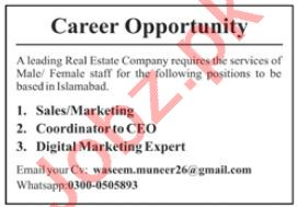 Digital Marketing Expert & Coordinator Jobs 2020