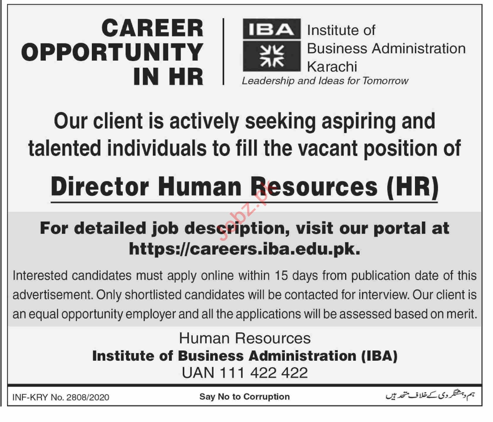 Institute of Business Administration IBA Jobs for Director