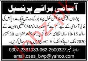 Cholistan Special Education School CSES Bahawalpur Jobs 2020