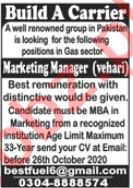 Manager & Marketing Manager Jobs 2020 in Vehari