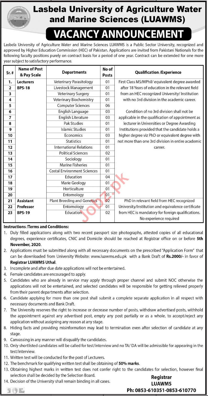 Professor & Lecturer Jobs 2020 in LUAWMS University