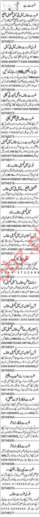 Cashier & Insurance Agent Jobs 2020 in Lahore