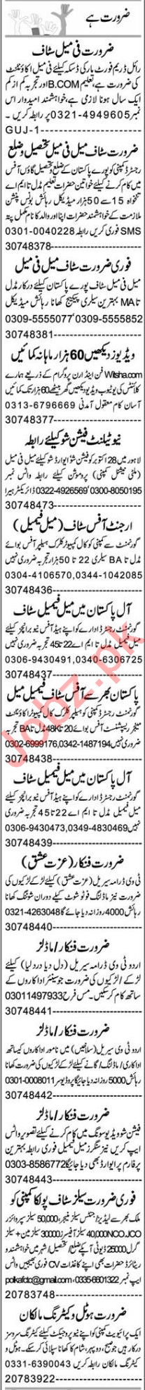 Business Development Executive & Accountant Jobs 2020