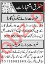 Security Executive & Security Incharge Jobs in Islamabad