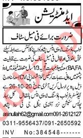 Nawab Housing Associates Peshawar Jobs 2020 for Sales Staff