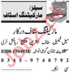 Sales Coordinator & Relationship Officer Jobs 2020 in Lahore