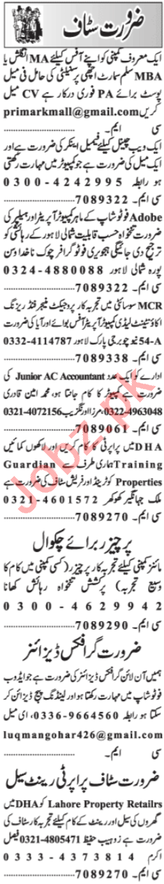 Graphic Designer & Accountant Jobs 2020 in Lahore