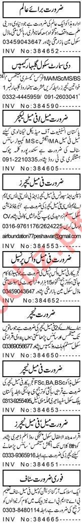 Male & Female Teaching Staff Jobs Open in Peshawar 2020
