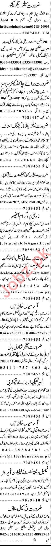 Jang Sunday Classified Ads 25 Oct 2020 for Management Staff