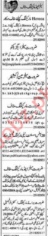 Dunya Sunday Classified Ads 25 Oct 2020 for Sales Staff