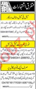 Khabrain Sunday Islamabad Classified Ads 25 Oct 2020