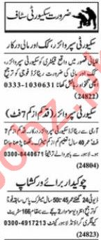 Nawaiwaqt Sunday Classified Ads 25 Oct 2020 for Security