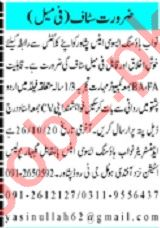 Mashriq Sunday Classified Ads 25 Oct 2020 for Sales Staff
