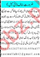 Sales Staff Jobs 2020 in Nawab Housing Associates Peshawar