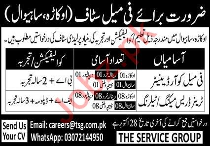 The Services Group Sahiwal Jobs 2020 for Female Coordinator