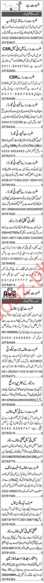Media Assistant & Web Developer Jobs 2020 in Islamabad