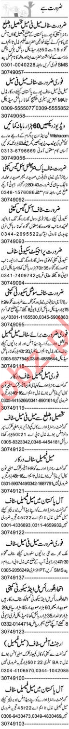 Assistant Accounts Manager & Finance Manager Jobs 2020
