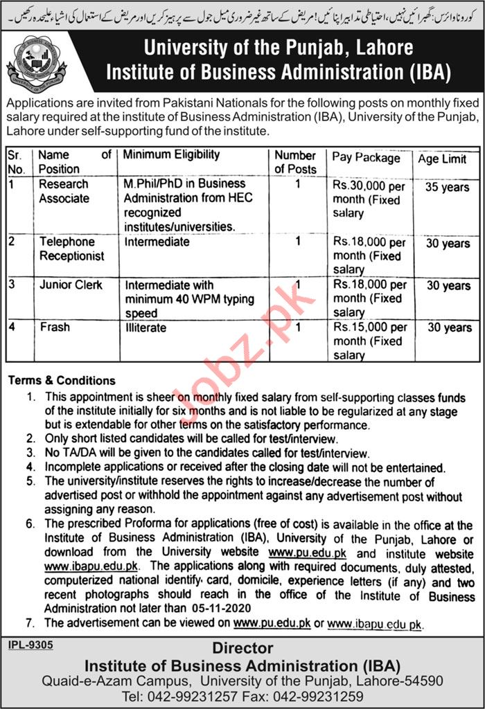 Institute of Business Administration IBA PU Lahore Jobs