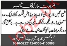 Shama Gas Corporation Gilgit Jobs 2020 for Marketing Manager