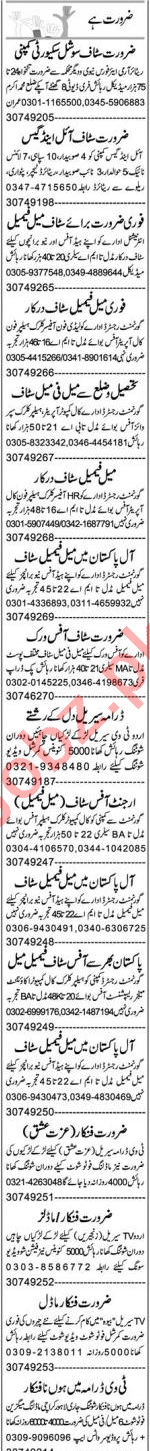 Admin Manager & Lab Assistant Jobs 2020 in Faisalabad