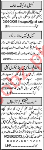 Web Developer & HR Officer Jobs 2020 in Islamabad