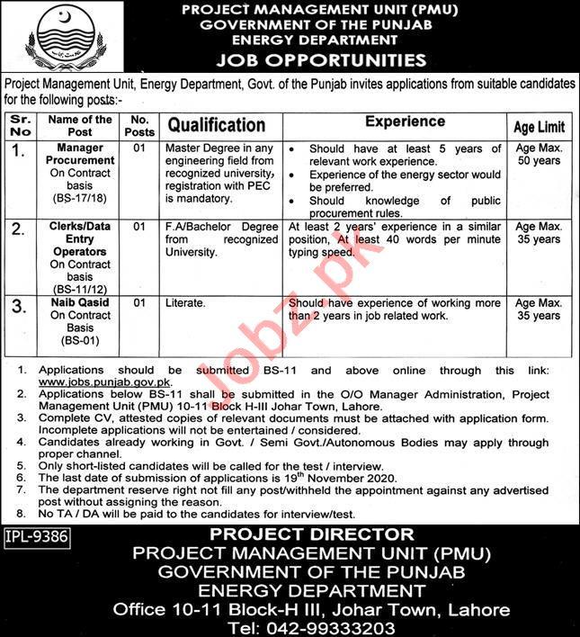 Project Management Unit PMU Energy Department Jobs 2020